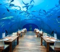 Los mejores hoteles bajo el agua, de Dubái a las Maldivas