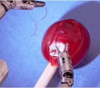 La increíble delicadeza de un robot cirujano al coser la piel de una uva